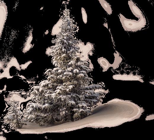 עץ עם שלג - מרכז אמנות הטיפול